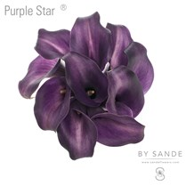 Purple Star®