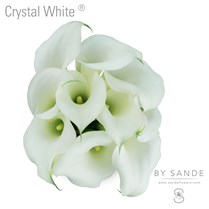 Crystal White
