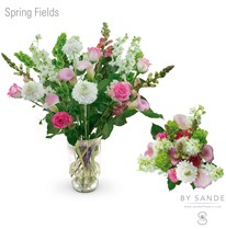 BQT Spring Fields
