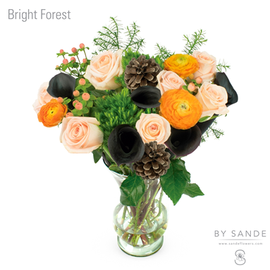 BQT Bright Forest