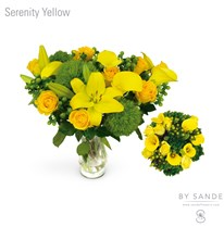 BQT Serenity Yellow