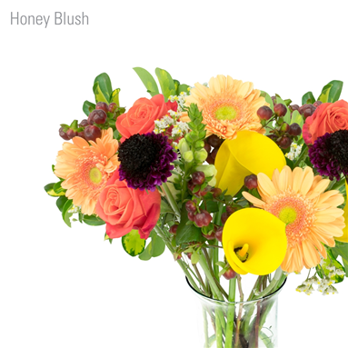 BQT Honey Blush