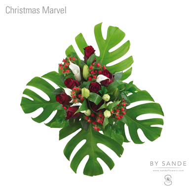 BQT Christmas Marvel
